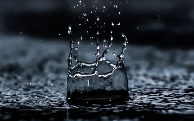 Early Life Exposure to Above Average Rainfall and Adult Mental Health